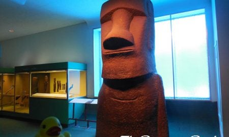 The Duck and the Rapa Nui (Easter Island) Moai Cast