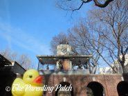 The Duck and the Delacorte Clock