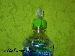Green Lion SippyNipple on Aquafina Bottle 1