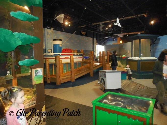 down the shore at the garden state discovery museum - Garden State Discovery Museum