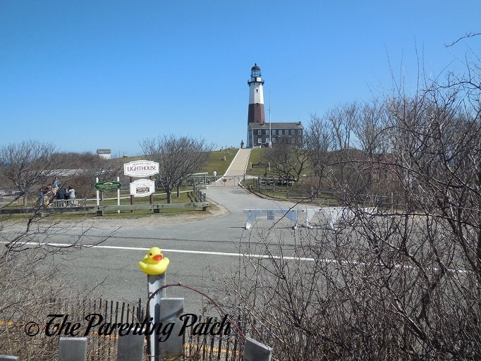 The Duck and the Montauk Point Lighthouse 1