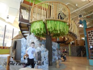 Wildernest at the Madison Children's Museum 2
