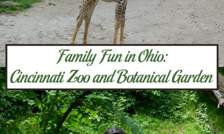 Family Fun in Ohio: Cincinnati Zoo and Botanical Garden