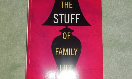 'The Stuff of Family Life: How Our Homes Reflect Our Lives' Book Review