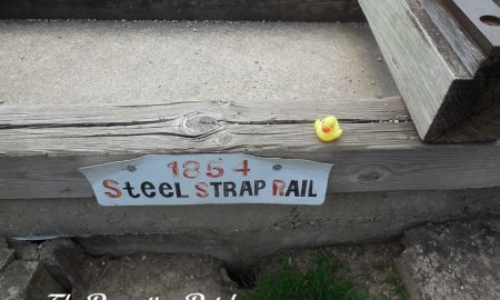 The Duck and the 1854 Steel Strap Rail