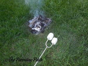 Cooking Marshmallows with a SUMPRI Telescoping Roasting Fork 1