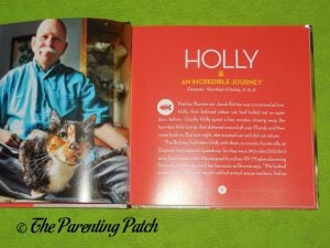 Inside Pages of 'Cat Tales: True Stories of Kindness and Companionship with Kitties' 1