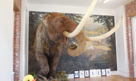 The Duck and the Mastodon at the Staten Island Museum at Snug Harbor