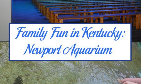 Family Fun in Kentucky: Newport Aquarium
