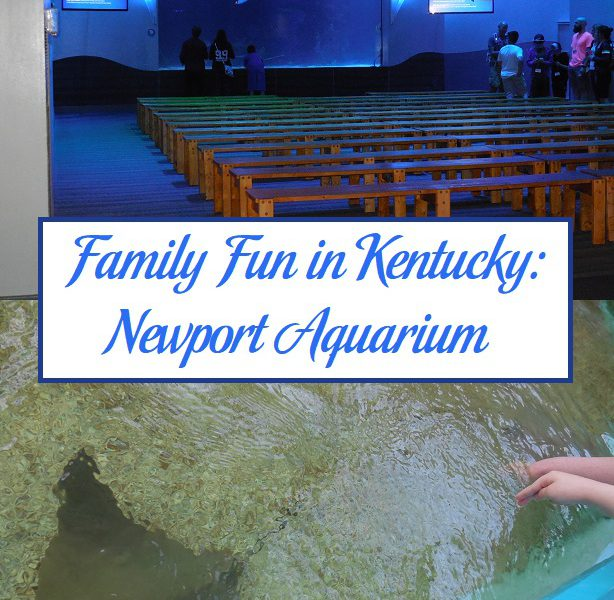 Family Fun In Kentucky Newport Aquarium Parenting Patch