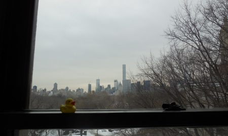 The Duck and Central Park from the American Museum of Natural History