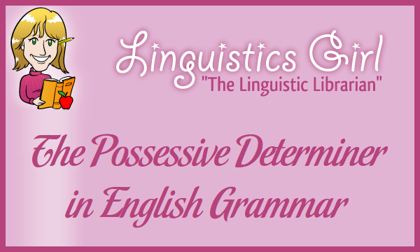 The Possessive Determiner in English Grammar