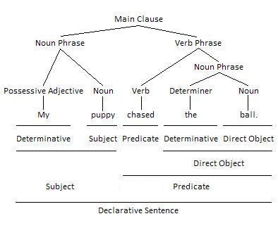 Noun Phrase as Subject