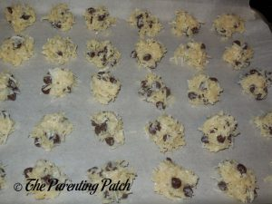 Unbaked Gluten-Free Chocolate Chip Coconut Macaroon Cookies
