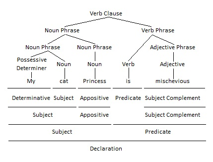 Noun as Appositive Grammar Tree