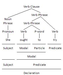 Quasi-modal Verb as Modal Grammar Tree