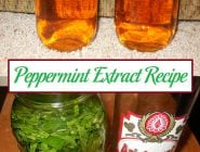 Peppermint Extract Recipe