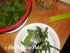 Chopping the Peppermint for Peppermint Extract