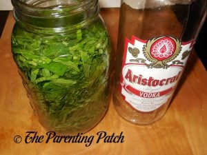 Soaking the Peppermint in Vodka for Peppermint Extract