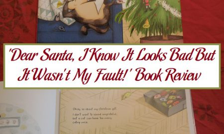 'Dear Santa, I Know It Looks Bad But It Wasn't My Fault!' Book Review