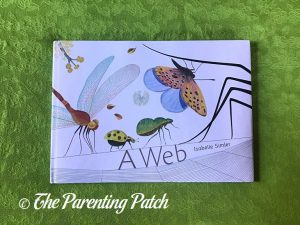 Front Cover of 'A Web'