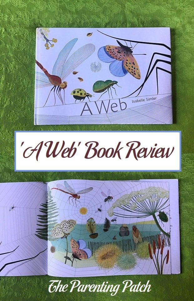 'A Web' Book Review