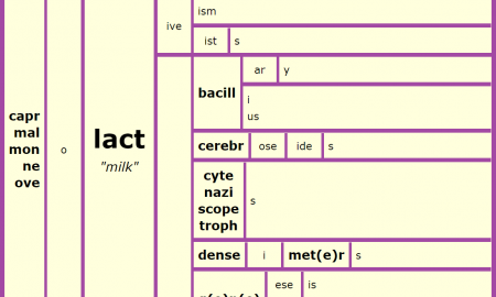 Word Matrix: Lact