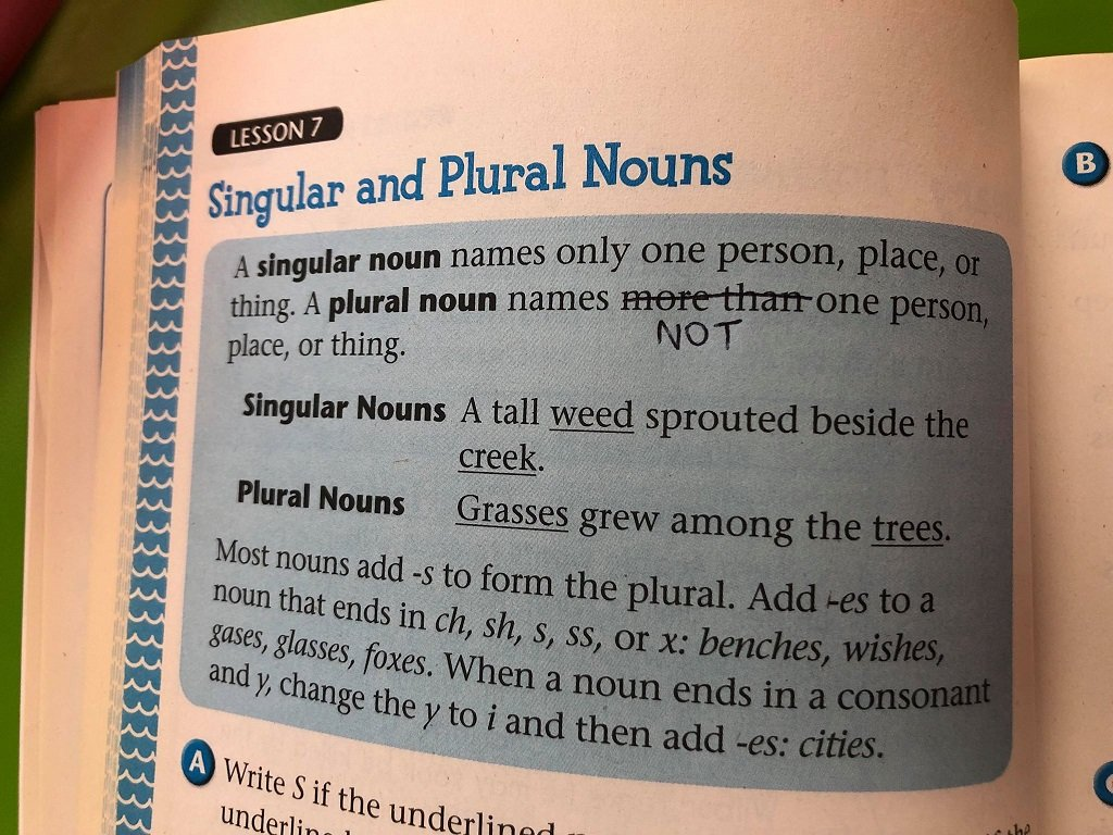 The Grammar & Writing Book Grade 3 Plural Nouns Page Edit