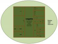 Word Matrix: Vegete