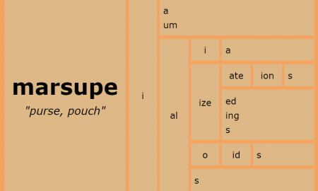 Word Matrix: Marsupe