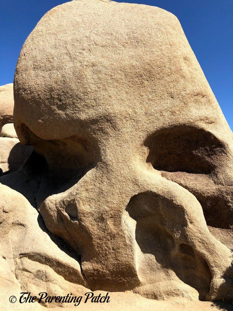 Skull Rock in Joshua Tree National Park
