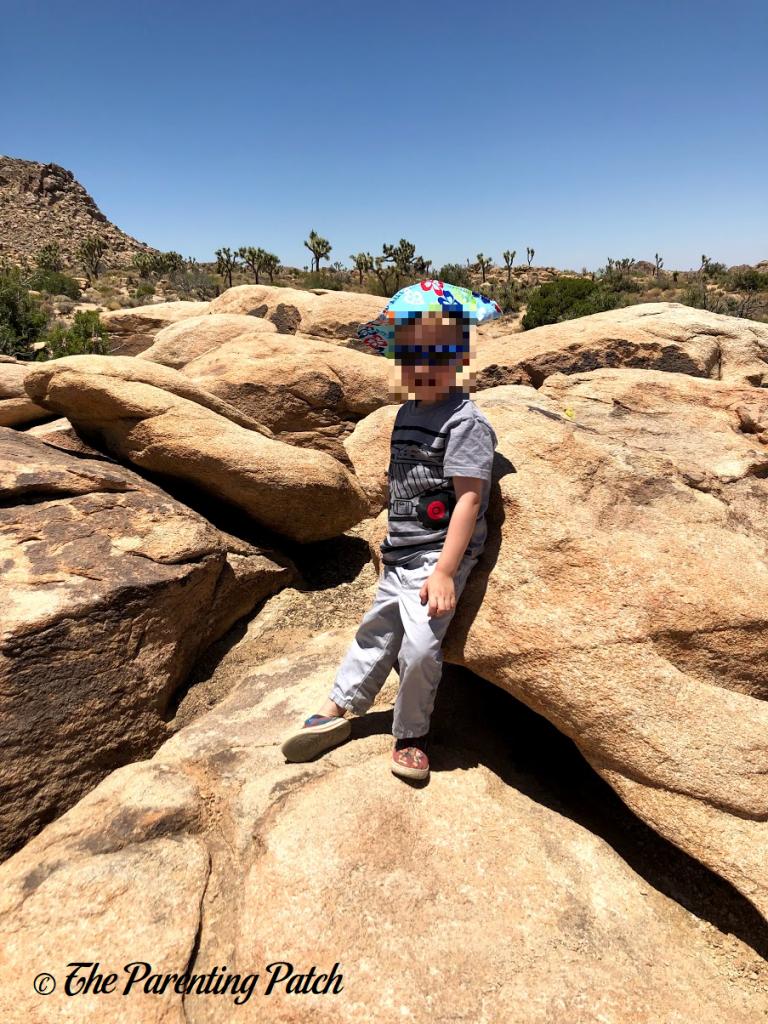 Rock Climbing in Joshua Tree National Park 1