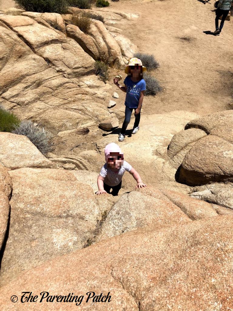Rock Climbing in Joshua Tree National Park 2