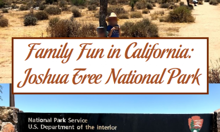 Family Fun in California: Joshua Tree National Park