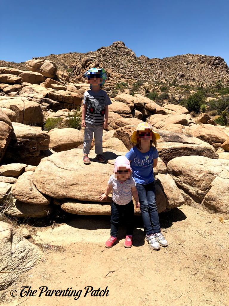 Rock Climbing in Joshua Tree National Park 3