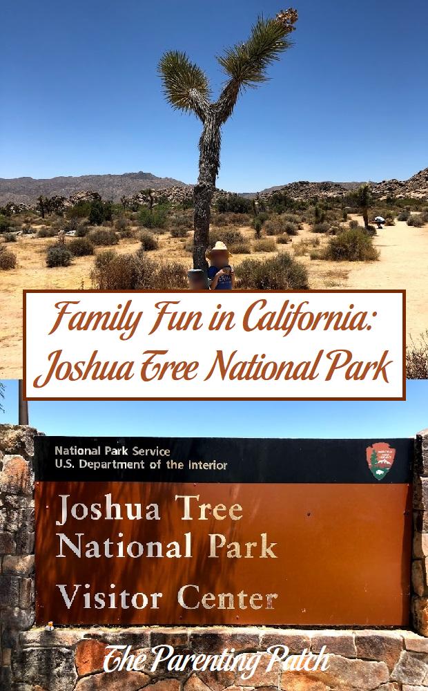 Family Fun in California: Joshua Tree National Park