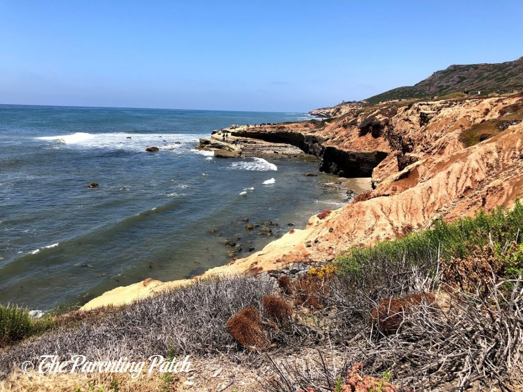 Point Loma Tide Pools at Cabrillo National Monument 4