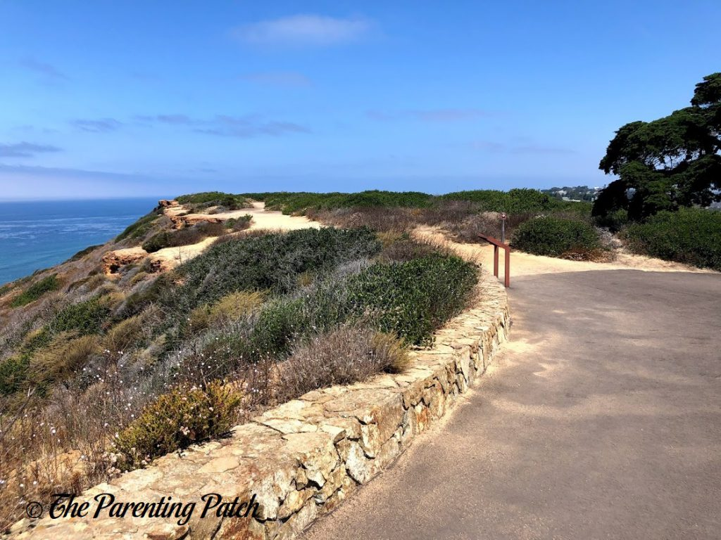 Cliffs at Cabrillo National Monument